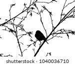bullfinch on a branch of a... | Shutterstock . vector #1040036710