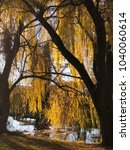 willow tree on river shore ...   Shutterstock . vector #1040060614