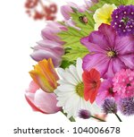 Spring Flowers And Leaves ,Close Up For Background - stock photo
