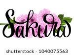 sakura brush lettering on... | Shutterstock .eps vector #1040075563