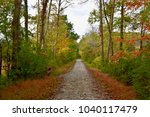 scenic view of a rails to... | Shutterstock . vector #1040117479