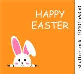 Stock vector easter rabbit easter bunny vector illustrator 1040156350