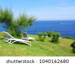 sun loungers on a green with... | Shutterstock . vector #1040162680