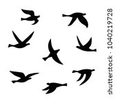 vector silhouette of a flock of ... | Shutterstock .eps vector #1040219728