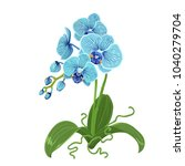 elegant gentle blue orchid... | Shutterstock .eps vector #1040279704