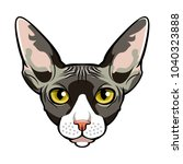 sphynx  cat face cartoon flat... | Shutterstock . vector #1040323888