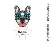 english bulldog dog in smart... | Shutterstock . vector #1040362813