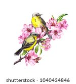 birds on blossom branch with... | Shutterstock . vector #1040434846