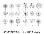 Dandelion Flowers With Fluffy...