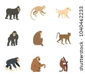 different monkey icon set. flat ... | Shutterstock . vector #1040462233