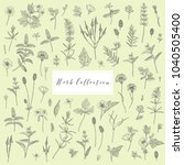 vector hand drawn collection of ... | Shutterstock .eps vector #1040505400