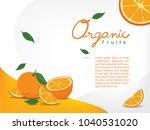 sliced oranges on clean white... | Shutterstock .eps vector #1040531020