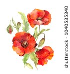 red poppy flowers bouquet.... | Shutterstock . vector #1040535340
