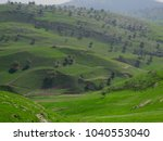Small photo of The green fields in the north of Jordan , to the west of Irbid on the way to the Jordan Valley