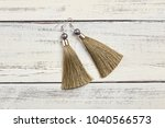 beige tassel earrings on white... | Shutterstock . vector #1040566573