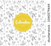 vector hand drawn floral... | Shutterstock .eps vector #1040579644