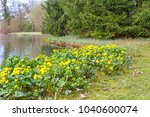 spring background with yellow   ... | Shutterstock . vector #1040600074