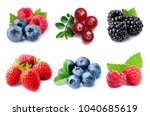 collection of berry on white... | Shutterstock . vector #1040685619