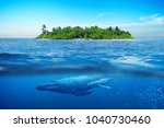 beautiful island with palm... | Shutterstock . vector #1040730460