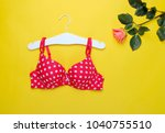fashionable beautiful bra and... | Shutterstock . vector #1040755510