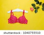 fashionable beautiful bra and... | Shutterstock . vector #1040755510
