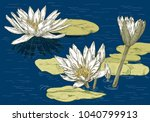 flowering water lilies on the... | Shutterstock .eps vector #1040799913