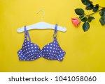 fashionable beautiful bra and... | Shutterstock . vector #1041058060