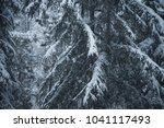 snow on a pine tree | Shutterstock . vector #1041117493