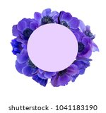 anemone bouquet with frame | Shutterstock . vector #1041183190