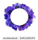 anemone bouquet with frame | Shutterstock . vector #1041183193