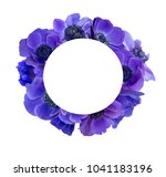 anemone bouquet with frame | Shutterstock . vector #1041183196