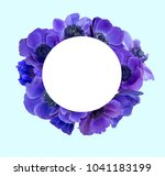 anemone bouquet with frame | Shutterstock . vector #1041183199