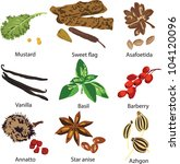 a set of different spices on a... | Shutterstock .eps vector #104120096