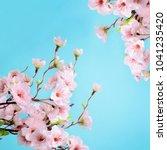 pink cherry blossom flowers on... | Shutterstock . vector #1041235420