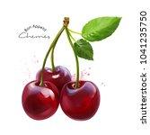 cherries and splashes of... | Shutterstock . vector #1041235750