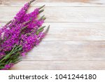 purple flowers on the table ... | Shutterstock . vector #1041244180