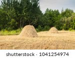 a stack of hay on the field | Shutterstock . vector #1041254974