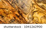 abstraction  texture of natural ... | Shutterstock . vector #1041262900
