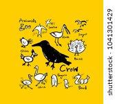 animal sketch   hand drawn zoo... | Shutterstock .eps vector #1041301429