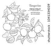 tangerine branches vector   Shutterstock .eps vector #1041334039