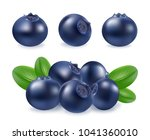 blueberries icon set. realistic ... | Shutterstock .eps vector #1041360010