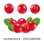 ripe red cranberries with... | Shutterstock .eps vector #1041360430