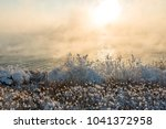dawn over the winter river. fog ... | Shutterstock . vector #1041372958