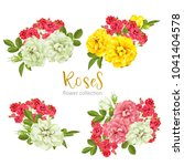set collection flowers roses on ... | Shutterstock .eps vector #1041404578