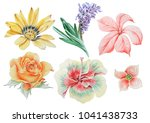 set with watercolor flowers.... | Shutterstock . vector #1041438733