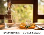 mezcal is a distilled alcoholic ... | Shutterstock . vector #1041556630