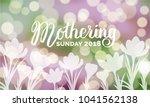 mothering sunday 2018... | Shutterstock .eps vector #1041562138