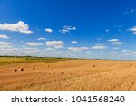 wheat field after harvest with... | Shutterstock . vector #1041568240