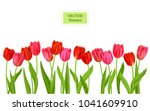 isolated tulips flowers banner | Shutterstock .eps vector #1041609910