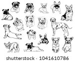 set of hand drawn sketch style... | Shutterstock .eps vector #1041610786